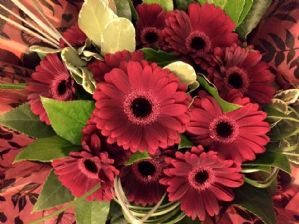 Red Gerbera Bouquet